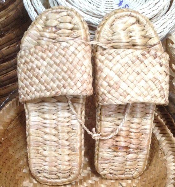 water hyacinth slipper