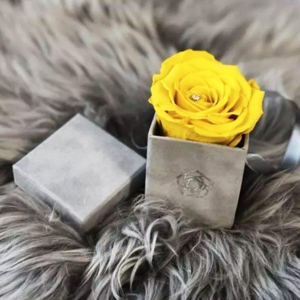 Foil stamped velvet box